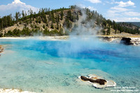USA - Wyoming, Yellowstone NP (17/08/2013)