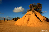 Australia - Pinnacles desert (2008)